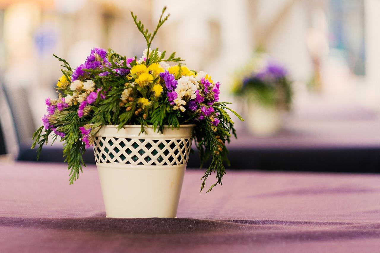 Kwiaty idealne na balkon i do ogrodu.