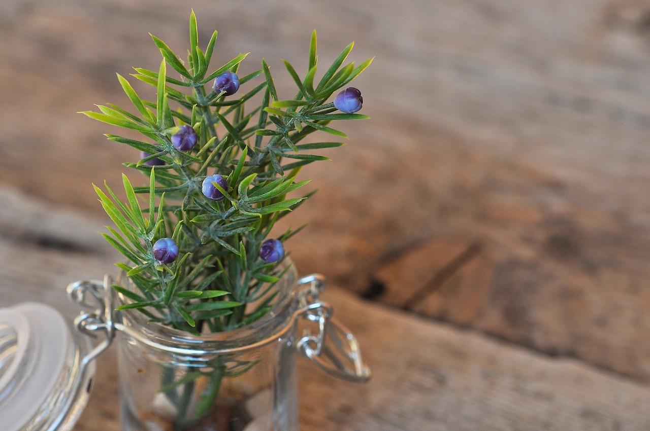 Słoik wykorzystany jaki donica na roślinkę.